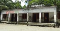 <small>জ্বিনতলা সরকারী প্রাথমিক বিদ্যালয়</small>পাথরঘাটায় দুই শিক্ষক দিয়ে ছয় শ্রেণির পাঠদান!