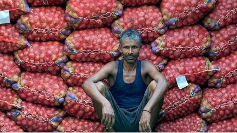 পেঁয়াজ, পেঁয়াজ আমদানি, ভারত
