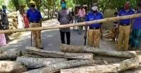 আমতলী উপজেলাকে লক-ডাউন ঘোষনা করলেন নির্বাহী কর্মকর্তা